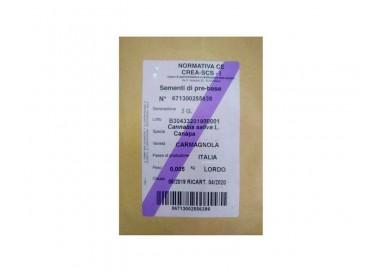Semillas certificadas de Cáñamo.  Var. Carmagnola (5 gramos)